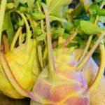 イタリア野菜『コールラビ』は、ほっこりシャキシャキ。サブジとアンチョビガーリック炒めレシピ!