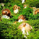 滋賀県甲賀市 信楽焼陶芸村『登り窯カフェ』de洞窟探検のような雰囲気でいただく珈琲とタヌキ軍団!