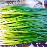 わけぎ祭り2017春!尾道岩子島ミーシャンズファームわけぎで、和洋中料理を楽しみました。