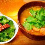 赤ちゃんのための優しい野菜「ベジベジ・パクチー」でエスニックなサラダ&スープ!尾道・岩子島みどり農園