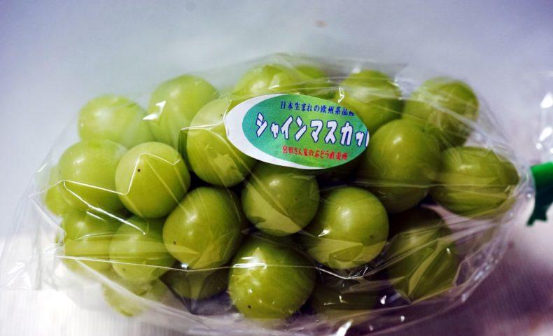 徳島県阿波市『土成ぶどう』糖度の高さと香り高さにビックリうっとり! お遍路グルメ-02