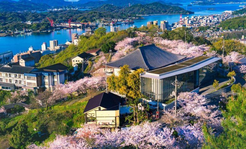 尾道の桜2019☆尾道市「日本さくら名所100選 千光寺公園」