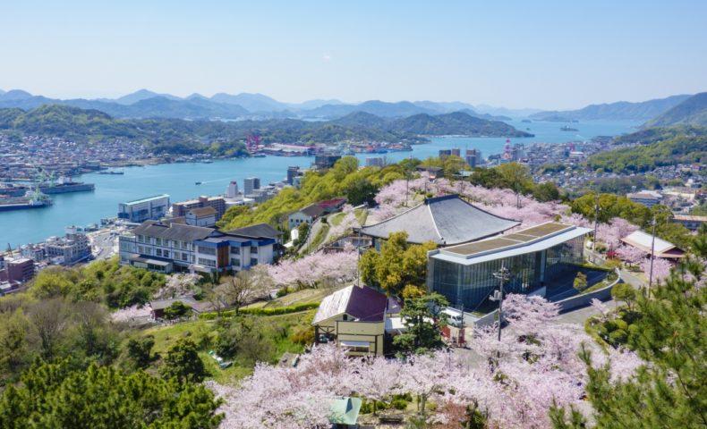 尾道の桜2020☆尾道市「日本さくら名所100選 千光寺公園」